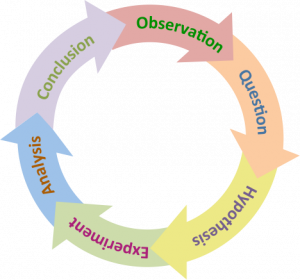 Diagram shows the scientific cycle arranged in a circular formation: Observation, questions, hypothesis, experiment, analysis, conclusion and then returning to observation again.