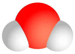 Image shows a model of a water molecule. A large central oxygen atom is connected to two adjacent, smaller white hydrogen atoms.