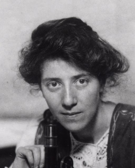18.11.1 Marie Stopes