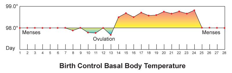 18.11.7 Basal Body Temperature