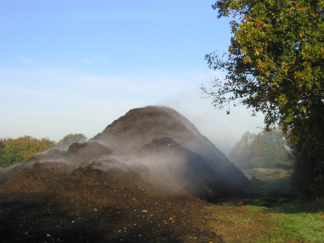 A large pile of compost in a field. The compost has a cloud of steam around it, indicating release of heat into the environment as a result of the decomposition process.