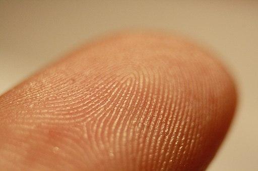 10.3 Fingerprints