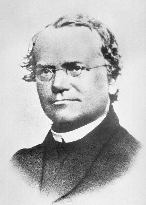 Image shows a photograph of Gregor Mendel