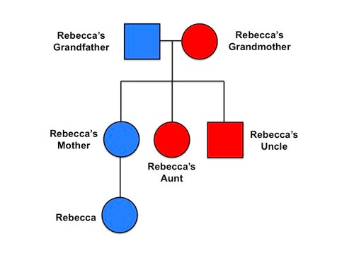 Pedigree showing Cancer in the family